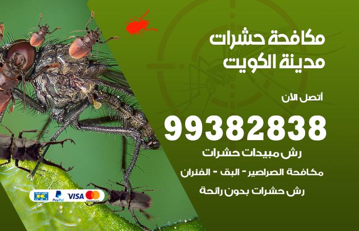 مكافحة حشرات مدينة الكويت