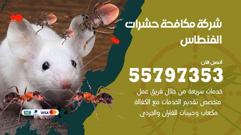 شركة مكافحة حشرات وقوارض الفنطاس