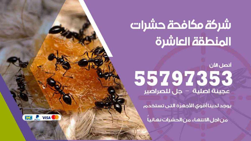 شركة مكافحة حشرات وقوارض المنطقة العاشرة