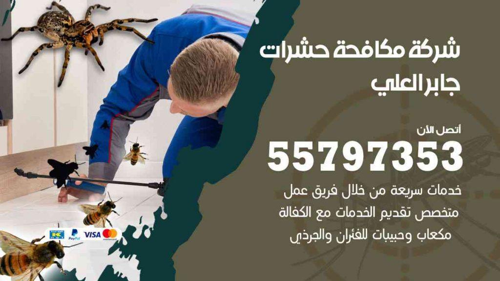 شركة مكافحة حشرات وقوارض جابر العلي