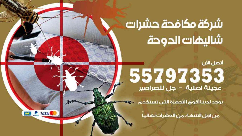 شركة مكافحة حشرات وقوارض شاليهات الدوحة