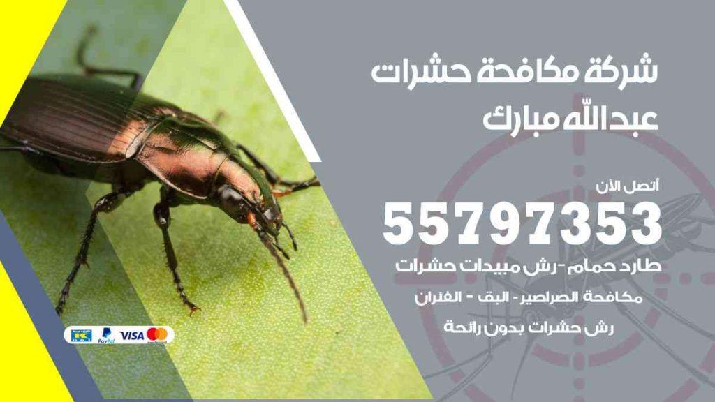 شركة مكافحة حشرات وقوارض عبدالله مبارك